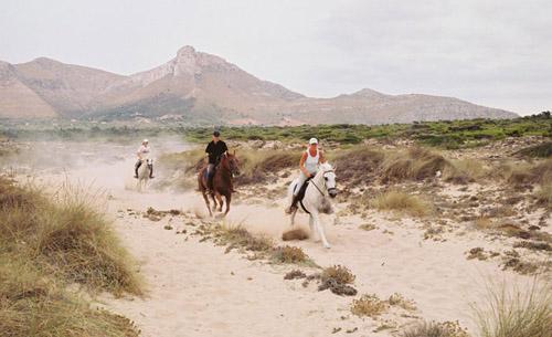 Son Menut, Se Mallorca från hästryggen