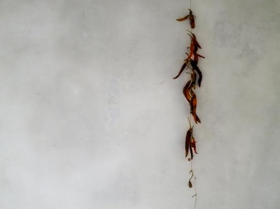Inget kök på Mallorca utan lite spansk peppar
